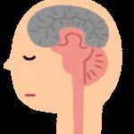 ピアノを感じる脳のイメージ